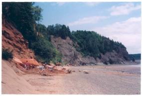Wasson's Bluff Bonebed