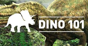 dino-101