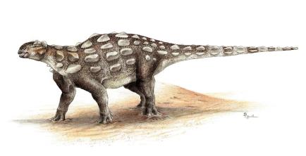 Gobisaurus_SydneyMohr