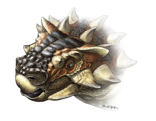 Zaarapelta reconstruction by Danielle Dufault
