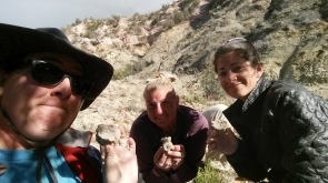 New finds in the Moreno Hill Formation, New Mexico